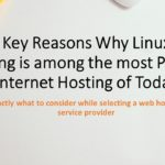 The Key Reasons Why Linux Net Hosting is among the most Popular Internet Hosting of Today
